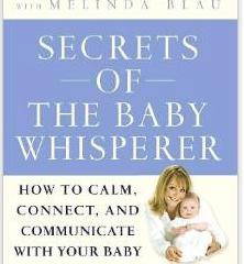 Baby whisperer book