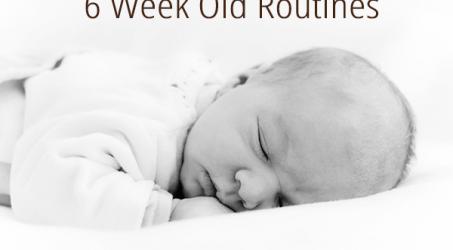 6 Week Old Routine / Schedule