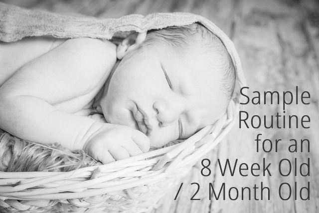Sample Routine for an 8 Week Old